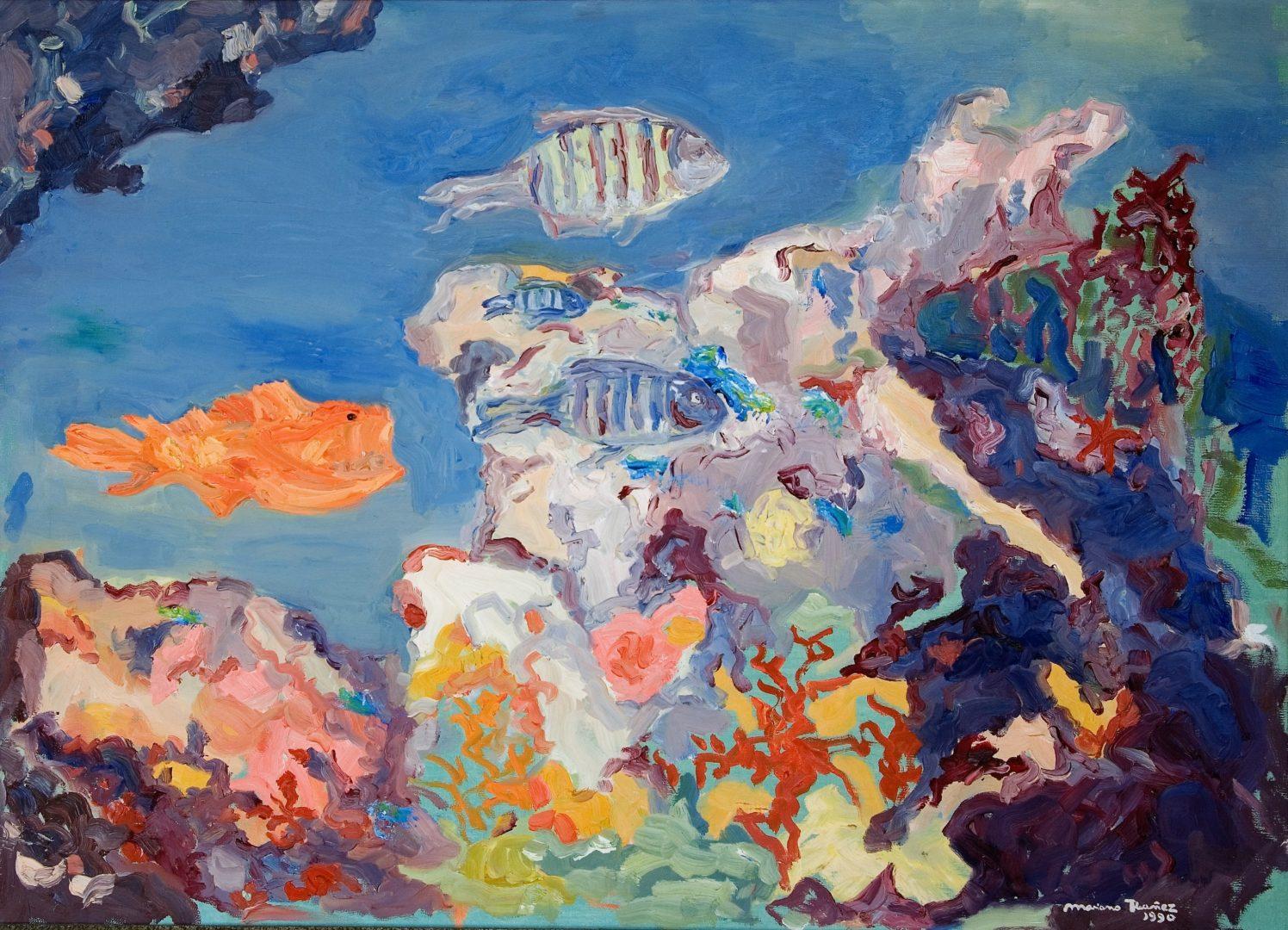 fondo marino y corales